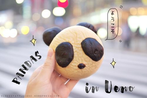 Panda in Ueno